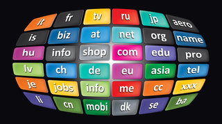 Worldwide Top Domains